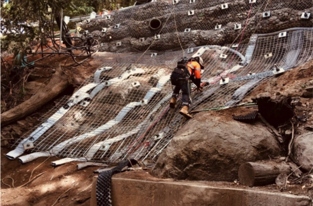 ROPE ACCESS SLOPE STABILISATION
